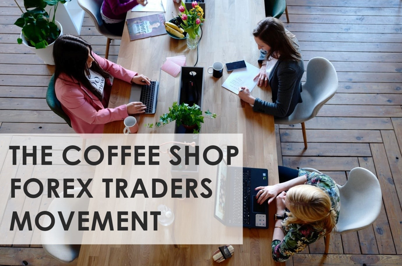 COFFEE SHOP FOREX TRADERS